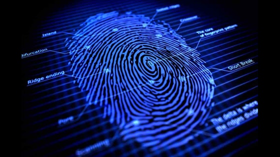 Automated Biometric Identification System